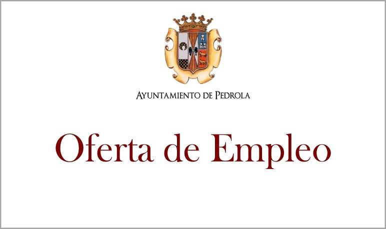 Convocatoria para proveer una plaza de técnico de juventud en el Ayuntamiento de Pedrola