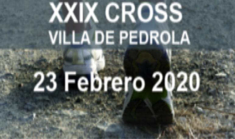 XXIX Cross Villa de Pedrola