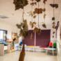 Pedrola informatizará y realizará mejoras en su escuela infantil como parte del protocolo covid