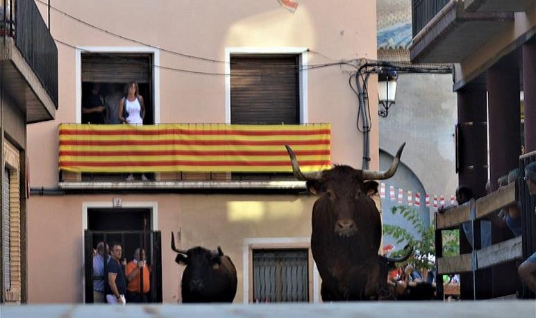 El Ayuntamiento de Pedrola suspende las fiestas de San Roque de este año 2021